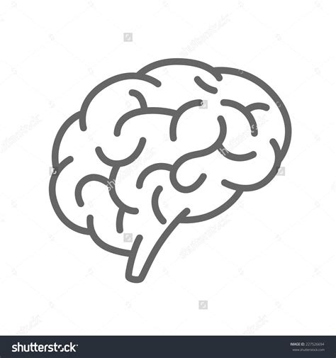 brain clipart brain clipart simple pencil and in color brain clipart