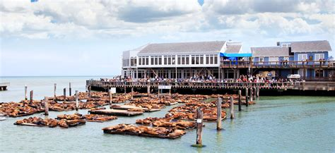 fisherman s wharf top 10 most beautiful places to see in san francisco
