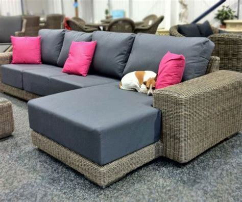 dog friendly couch pet friendly materials to use in your home