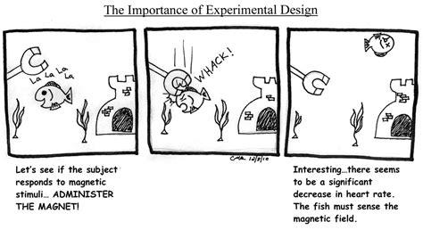 design the experiment experimental design aynise benne