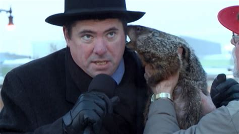 groundhog day jimmy jimmy the grouchy groundhog bites wisconsin mayor on the ear