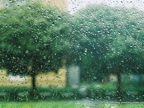 Rainy Summer by A Rainy Day In Summer Essay