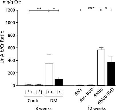 albumin creatinine ratio u urinary albumin creatinine ur alb cr ratio mg g crea
