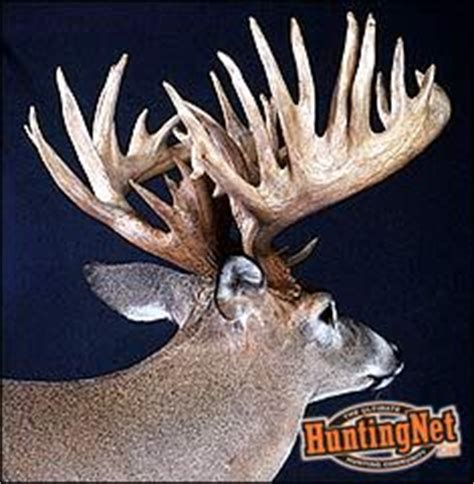 World Record Deer Rack by Apply Now For Your Illinois Bow Tag