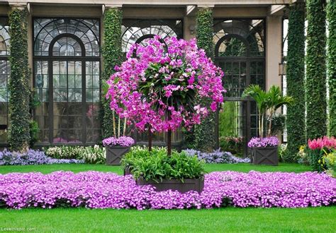 beautiful landscaping beautiful landscaping pictures photos and images for