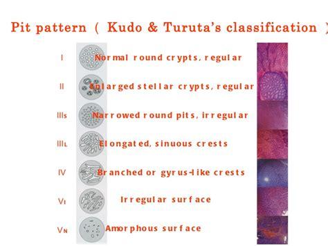 pit pattern classification kudo from iraqi kurdistan to japan