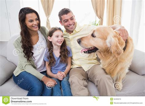 is a golden retriever a family family looking at golden retriever on sofa stock photo image 50493213