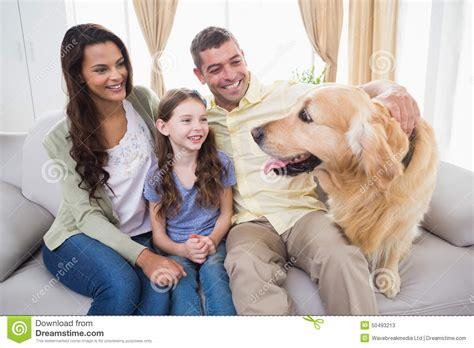 golden retriever family family looking at golden retriever on sofa stock photo image 50493213