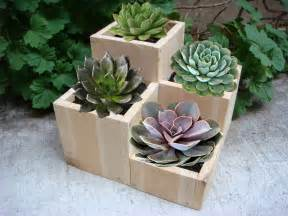 wood block planter planters tabletop