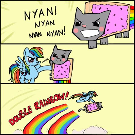 Cat Rainbow Meme - image 152214 nyan cat pop tart cat know your meme