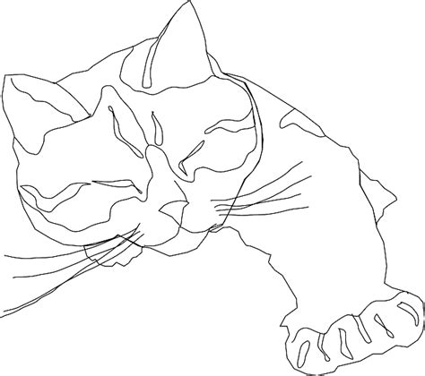 Two Cats Outline by Free Pictures Cats 134 Images Found