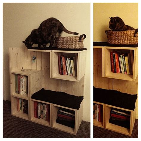bookshelf cat tree cat trees cat trees