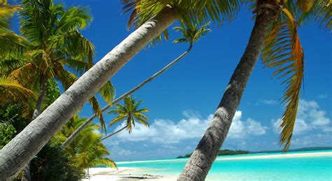 images of cheap flights to rarotonga cook islands 460 60 in 2017
