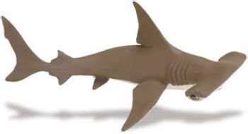 baby shark usa hammerhead baby shark toy replica at animal world 174