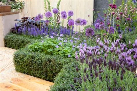 perennial combinations plant combinations flowerbeds ideas summer borders mediterranean