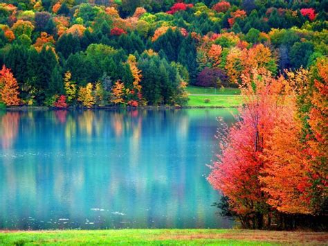 wallpaper background fall wallpapers fall wallpaper cave