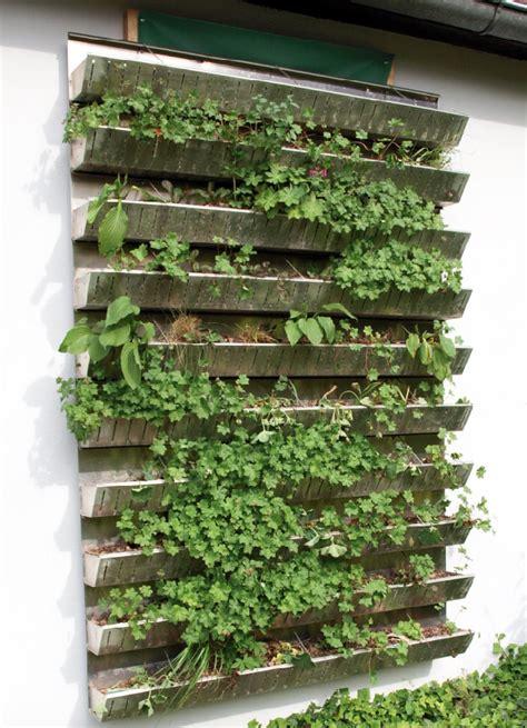 vertikaler garten balkon vertikale g 228 rten nachhaltigkeit artikel 187 serlo org