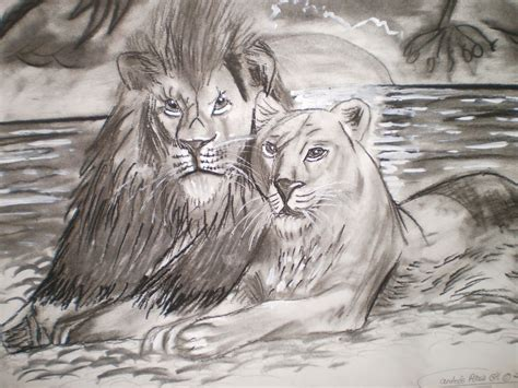 imagenes de leones felises pareja de leones andr 233 s p 233 rez gil artelista com
