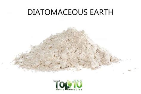 10 Uses For Diatomaceous Earth 10 Interesting Uses Of Food Grade Diatomaceous Earth Top