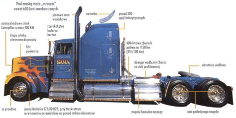1966 kenworth w900 wiring diagram get free image about