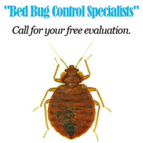 bed bug exterminator los angeles serving all of orange county and los angeles county for
