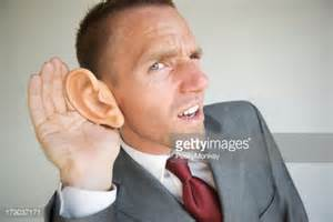 large ears stock photos and pictures getty images