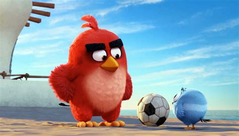 pictures photos from the angry birds movie 2016 imdb the angry birds movie 2016 outclass wallpapers