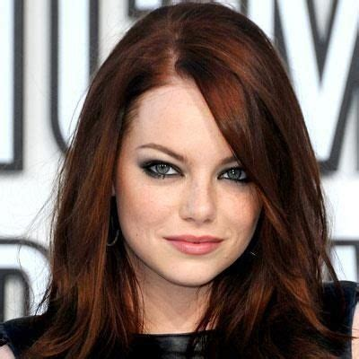 crimson obsession on dark brown hair 1000 images about pelo on pinterest dark hair colours