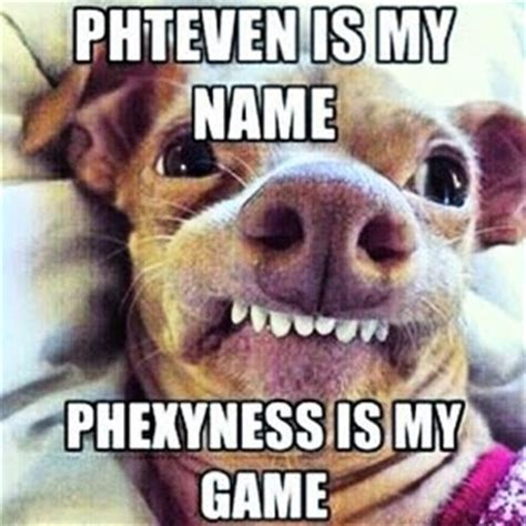 Phteven Dog Meme - phteven dog mcdonalds www pixshark com images galleries with a bite