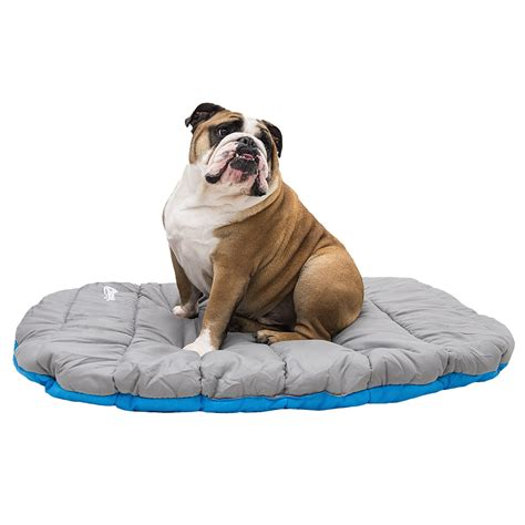 travel dog bed chuckit soft top quilted travel dog bed 30x39 quot save 50