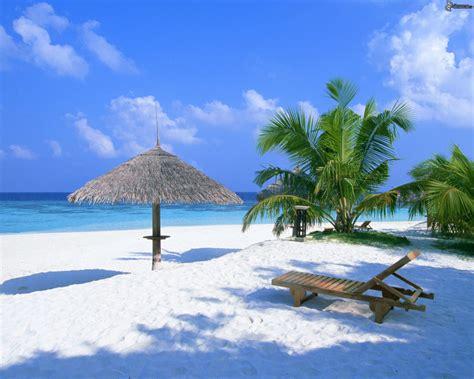 strand liege sonnenschirm am strand