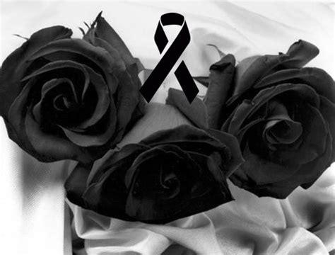 imagenes de rosas negras para whatsapp las mejores im 225 genes de rosas negras de luto con mensajes