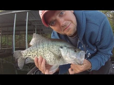 slab crappie frenzy arkansas crappie fishing youtube