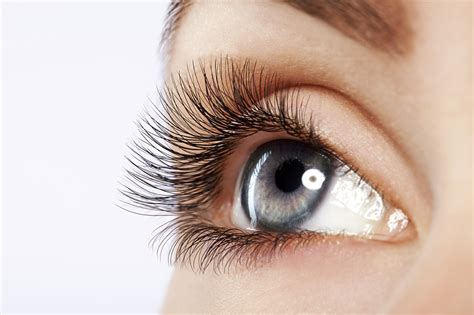 Eye Lash beautiful eyelash extensions www imgkid the image