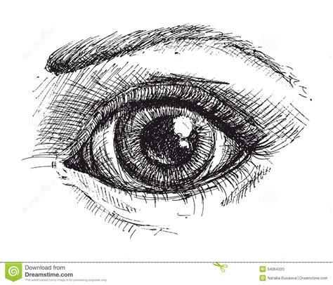 imagenes en blanco y negro de ojos dibujo blanco y negro del ojo ilustraci 243 n del vector