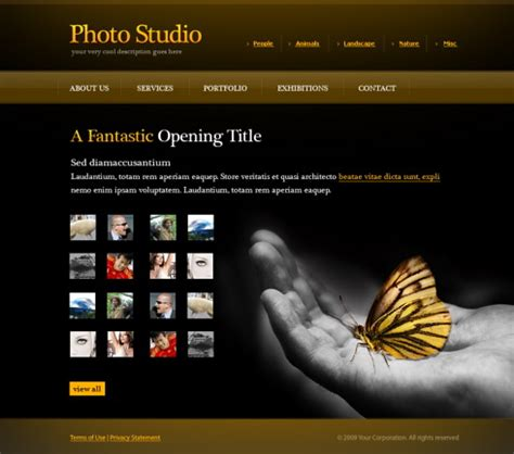 Photo Gallery Web Template 6072 Art Photography Website Templates Dreamtemplate Photography Template