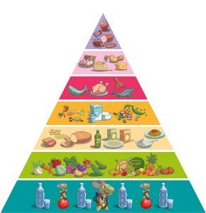 piramide alimentare toscana la piramide alimentare uga la tartaruga