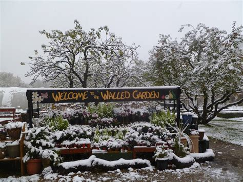 Walled Garden Ripon News And Media Humberside Lincolnshire