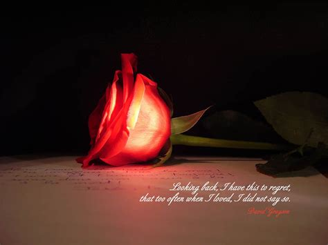 3d wallpaper of love quotes wallpapers love quotes desktop wallpapers
