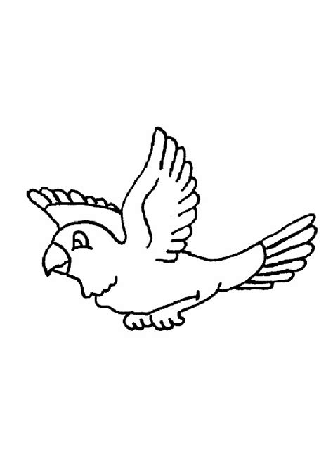 imagenes faciles para dibujar de pajaros aves volando para colorear www pixshark com images