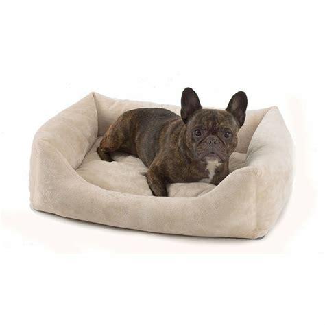 coussin pour chiens le coussin pour chien un confort pour votre ami archzine fr