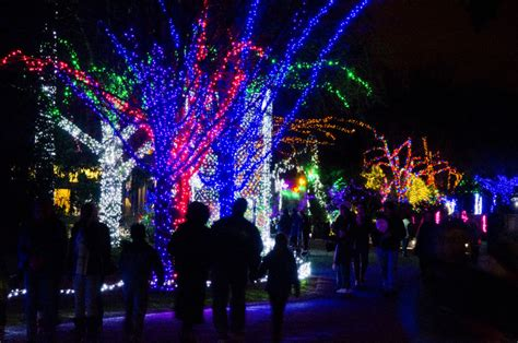9 Holiday Experiences In Seattle You Shouldn T Miss Zoo Light Seattle