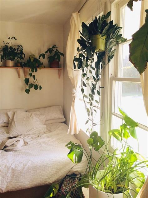 yaya plants in the bedroom