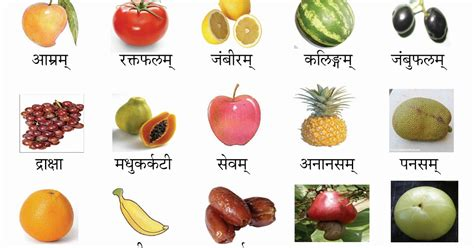 w fruit names fruits name in www imgkid the image kid has it
