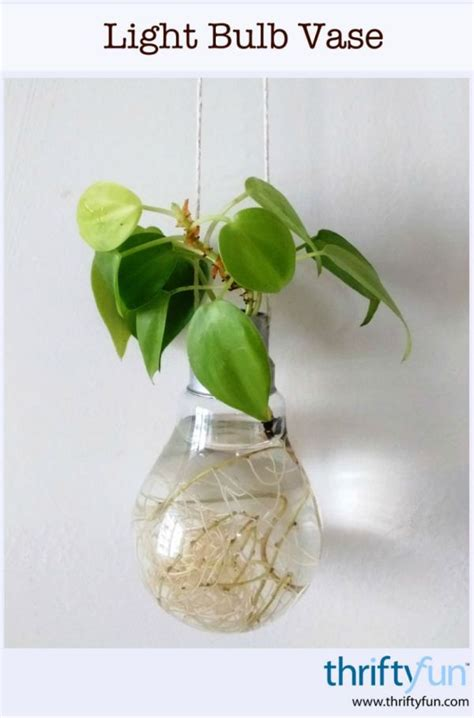 Make A Vase Into A L by A Light Bulb Vase Thriftyfun