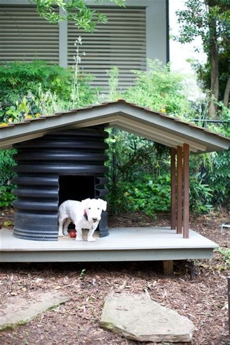 pre built dog houses c 243 mo hacer una casa para perro de exterior c 243 mo educar a