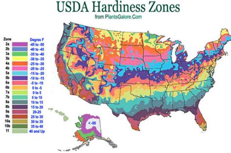 growing zone map usa science usda hardiness zone map ornamental plant care