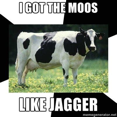 Cow Memes - judge reprimands jury for laughing at defendant accused of