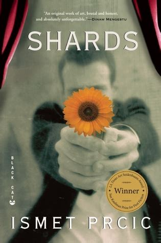 time shards books shards summary and analysis like sparknotes free book