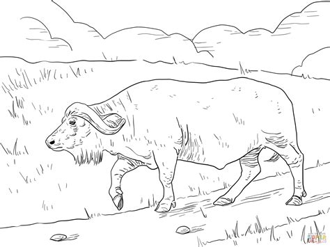 baby african animals coloring pages coloriage buffle du cap dans la savane coloriages 224